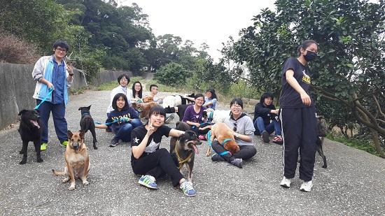 民眾帶著保育場的狗狗出外散步,享受慢活。
