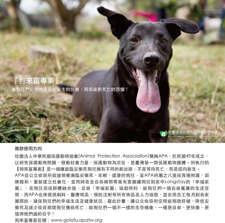 保护动物协会所执行的狗来富专案