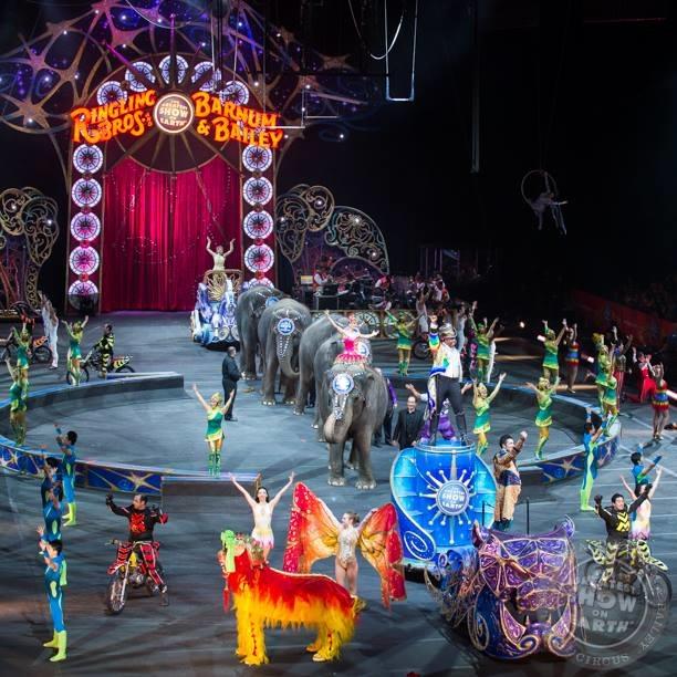 何玲玲_世界3大馬戲團之一 5月吹熄燈號 | 台灣動物新聞網