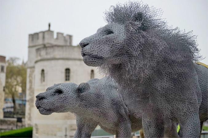 13只由铁丝网雕塑而成的野生动物