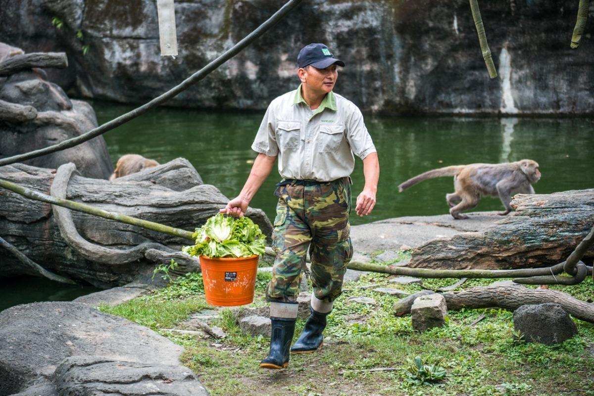 台北市立动物园台湾动物区的资深保育员