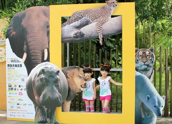 人气童星「左左右右」到台北动物园担任野生大地之旅摄影展代言人.