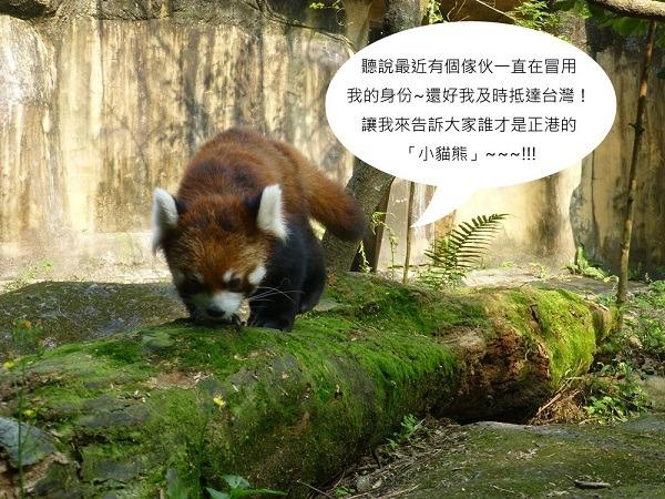 四川野生动物种类