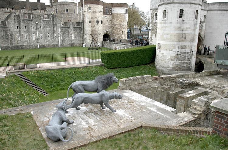 伦敦塔在13世纪打造了一个皇家动物园