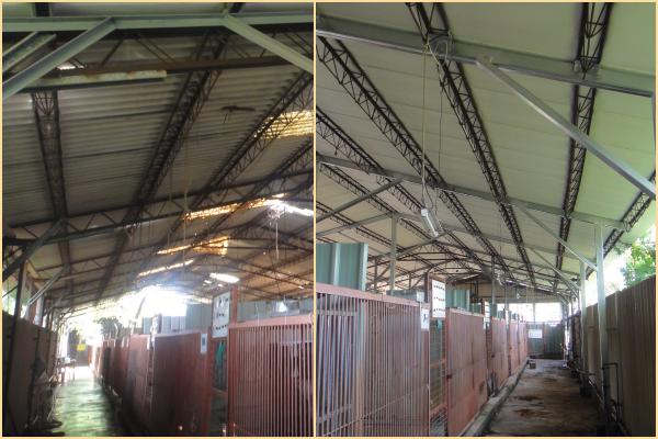 左圖為尚未改建的屋頂,右圖為改建後的屋頂,有隔熱效果。  江幸芸/攝