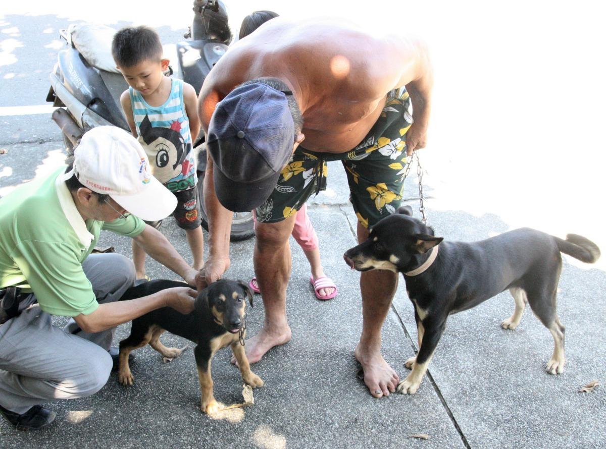 動保處呼籲民眾應每年須帶犬、貓等寵物施打狂犬病疫苗。高維奇/攝