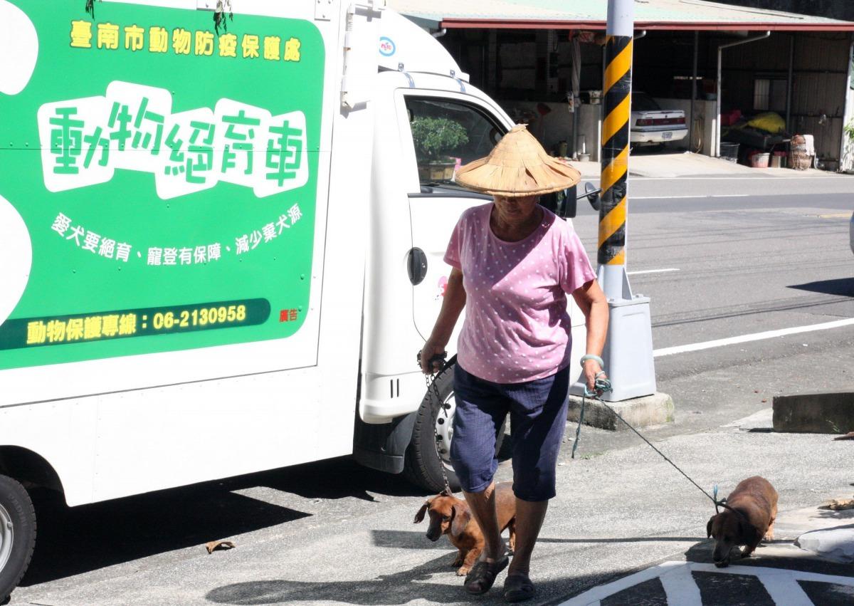台南市動保處107年偏鄉家犬貓免費絕育三合一活動6月14日開始進行。高維奇/攝
