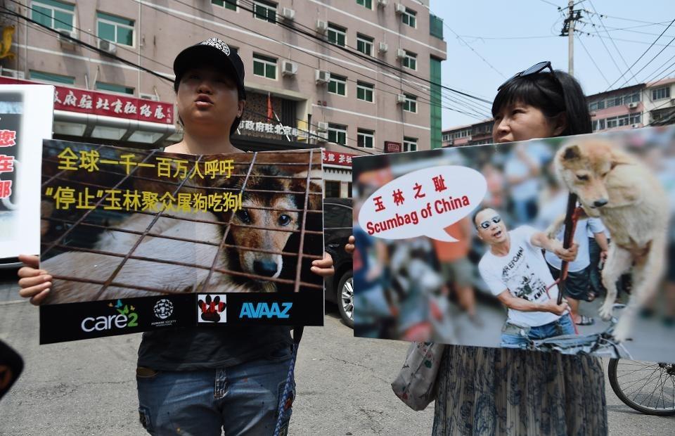 2016年的「抵制玉林狗肉節」全球連署,獲得1100萬人的支持,可惜4個發起團體遞交連署書之後,仍不能阻止玉林狗肉節的舉行。forbes.com