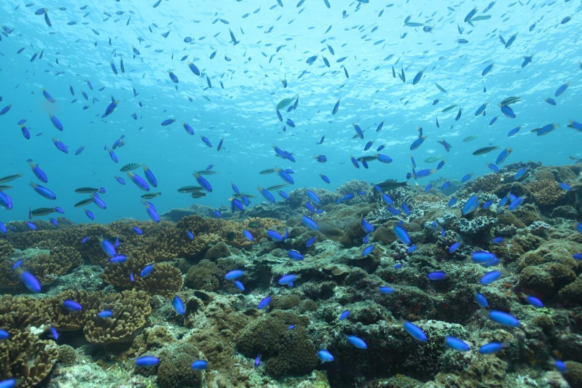 澎湖由90座島嶼所組成 富含多樣特色美景。國立高雄科技大學/提供
