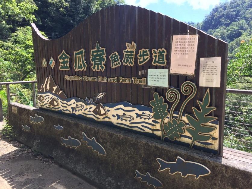 金瓜寮觀魚蕨類步道。新北市農業局/提供
