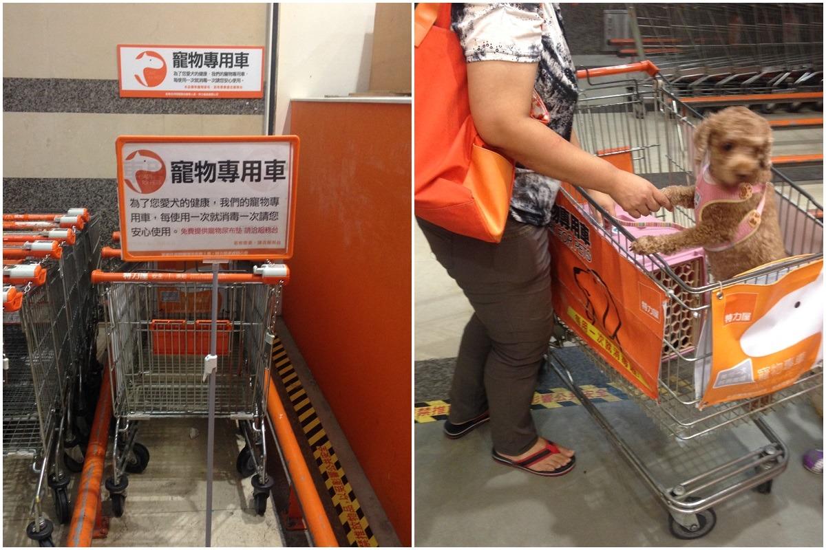 特力屋的寵物專用推車,與一般推車分開擺放。 台灣動物新聞網資料照(何宜/攝)