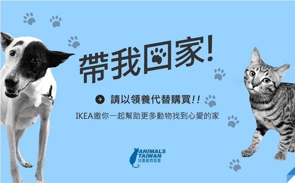 台灣IKEA協助台灣動物協會寄送電子廣告。 IKEA台灣總公司/提供