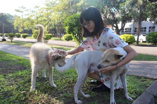 就讀輔大日文系的劉玉茹,現擔任「關懷流浪動物志工團隊」隊長。 江幸芸/攝