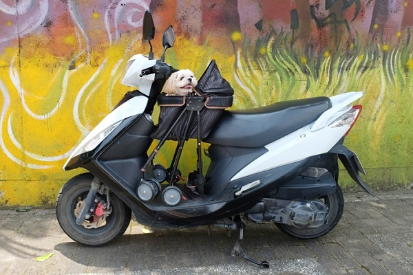 IBIYAYA推出機車適用的寵物推車,方便機車族帶毛孩出門。 IBIYAYA/提供