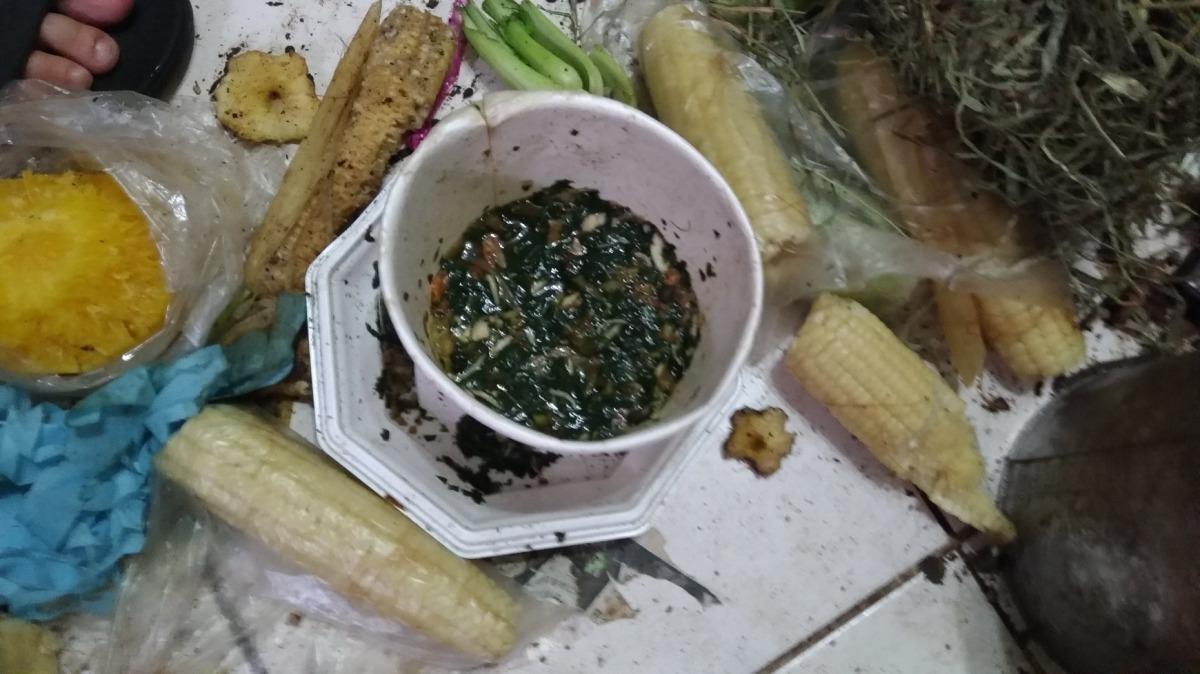 兔子平常食用的是婦人吃剩的廚餘,幾乎沒有飲水。台灣愛兔協會/提供