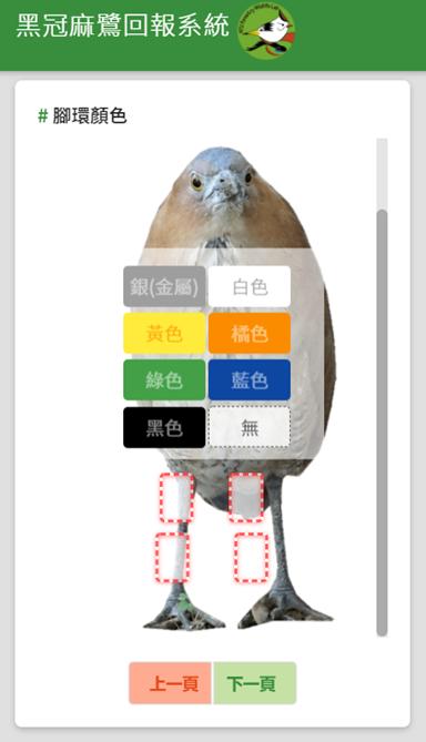 黑冠麻鷺回報系統示意圖。台北市動保處/提供