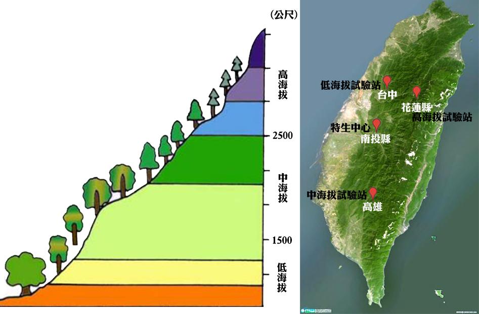 台湾黑熊出浴 低海拔试验站监看