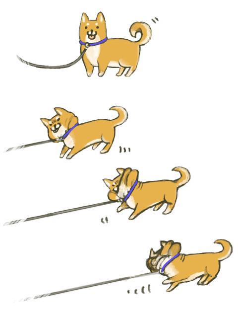 宅狗不出門可能是不滿意路線| 台...