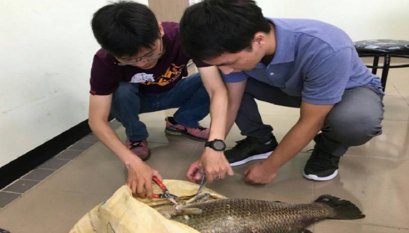 高雄市動保處人員帶著獸醫系學生診斷養殖戶魚隻。 高雄市動保處/提供