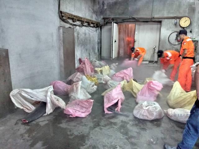 海巡人員在冷凍庫內共查獲50袋遭支解的海豚肉。海巡隊/提供
