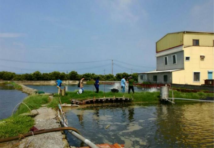 獸醫系實習生到水產養殖戶協助進行防疫及檢驗工作。 高雄市動保處/提供